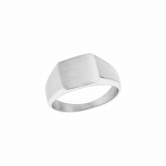 s.Oliver Herren  Damenring 2027432 Fingerring Gr.66 Herren Damen Ring Siegelring